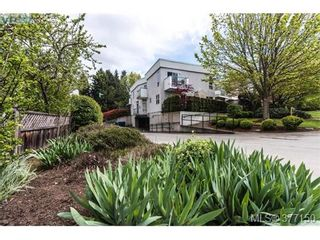 Photo 18: 13 3255 Rutledge St in VICTORIA: SE Quadra Row/Townhouse for sale (Saanich East)  : MLS®# 757193