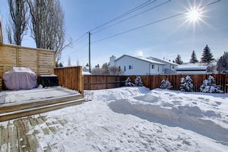 Photo 46: 119 Shawinigan Drive SW in Calgary: Shawnessy Detached for sale : MLS®# A1068163