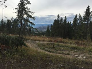 Photo 8: 6575 Dixon Dam Road in Vernon: South BX Vacant Land for sale (North Okanagan)  : MLS®# 10106215