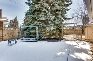 Photo 23: 411 49 Avenue SW in Calgary: Elboya Detached for sale : MLS®# A1061526