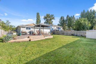 Photo 24: 20166 OSPRING Street in Maple Ridge: Southwest Maple Ridge House for sale : MLS®# R2614706