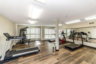 Photo 23: 203 5510 SCHONSEE Drive in Edmonton: Zone 28 Condo for sale : MLS®# E4246010