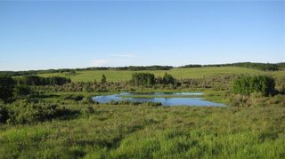 Photo 16: TWP RD 272 & RR 41 in Rural Rocky View County: Rural Rocky View MD Residential Land for sale : MLS®# A1127957