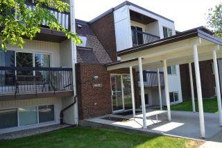 Photo 35: 303 11445 41 Avenue in Edmonton: Zone 16 Condo for sale : MLS®# E4225605