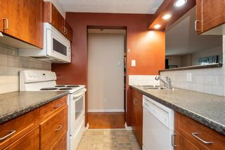 Photo 9: 1101 77 Edmonton Street in Winnipeg: Downtown Condominium for sale (9A)  : MLS®# 202025405