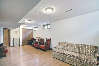 Photo 37: 12 Edgepark Rise NW in Calgary: Edgemont Detached for sale : MLS®# A1117749