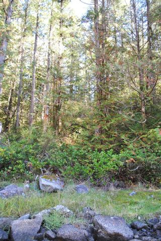Photo 7: Lot 42 Sonora Island in : Isl Small Islands (Campbell River Area) Land for sale (Islands)  : MLS®# 885460