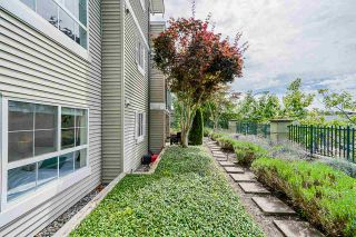 """Photo 31: 114 6336 197 Street in Langley: Willoughby Heights Condo for sale in """"Rockport"""" : MLS®# R2477551"""