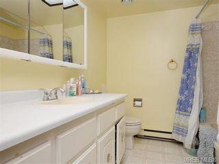 Photo 11: 798 Killdonan Rd in VICTORIA: SE High Quadra House for sale (Saanich East)  : MLS®# 745160