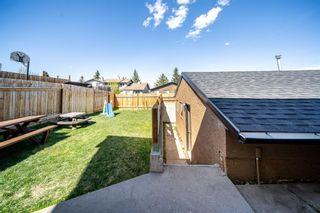 Photo 33: 36 Bermuda Way NW in Calgary: Beddington Heights Detached for sale : MLS®# A1111747