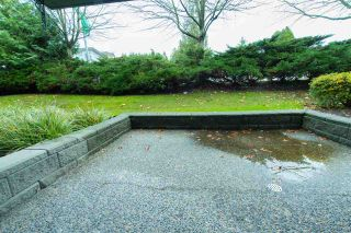 Photo 13: 110 6385 121 Street in Surrey: Panorama Ridge Condo for sale : MLS®# R2224904