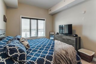 Photo 21: 448 10121 80 Avenue in Edmonton: Zone 17 Condo for sale : MLS®# E4264362