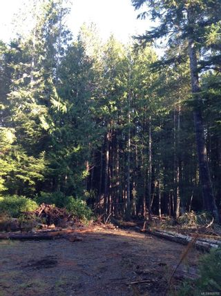 Photo 3: 45 Meynell Rd in : Isl Sointula Land for sale (Islands)  : MLS®# 868760