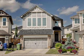 Photo 1: 40 BRIGHTONCREST Manor SE in Calgary: New Brighton Detached for sale : MLS®# A1016747