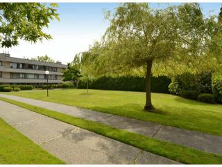 "Photo 17: 213 15275 19 Avenue in Surrey: King George Corridor Condo for sale in ""Village Terrace"" (South Surrey White Rock)  : MLS®# F1425373"