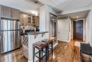 Photo 6: 301 733 14 Avenue SW in Calgary: Beltline Apartment for sale : MLS®# A1072103
