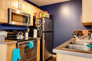 Photo 5: 302 534 20 Avenue SW in Calgary: Cliff Bungalow Apartment for sale : MLS®# A1089543