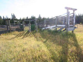 Photo 5:  in Kamloops: Barnhartvale Lots/Acreage for sale : MLS®# 153843
