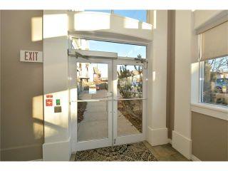 Photo 38: 208 128 CENTRE Avenue: Cochrane Condo for sale : MLS®# C4048864