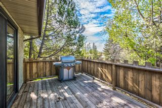 Photo 49: 204 Dalgleish Bay NW in Calgary: Dalhousie Detached for sale : MLS®# A1144517
