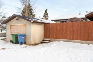 Photo 47: 3137 Doverville Crescent SE in Calgary: Dover Semi Detached for sale : MLS®# A1050547