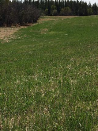 Photo 5: Twp 510 RR 33: Rural Leduc County Rural Land/Vacant Lot for sale : MLS®# E4239253