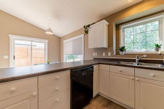 Photo 20: 1 ERINWOODS Place: St. Albert House for sale : MLS®# E4254213