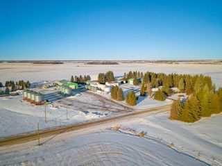 Photo 47: 57228 RGE RD 251: Rural Sturgeon County House for sale : MLS®# E4225650