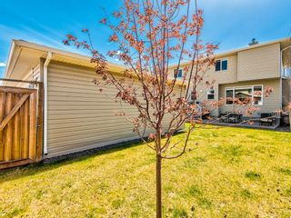 Photo 20: 149 Rainbow Falls Glen: Chestermere Detached for sale : MLS®# A1104325