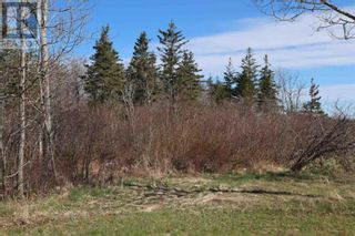 Photo 7: Lot Long Cove Road in Port Medway: Vacant Land for sale : MLS®# 202110309