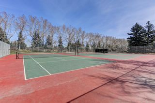 Photo 3: 907 31 Avenue NW in Calgary: Cambrian Heights Detached for sale : MLS®# A1095749