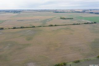 Photo 9: RM of Perdue - 148 Acres in Perdue: Lot/Land for sale (Perdue Rm No. 346)  : MLS®# SK870827