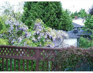 Photo 4: 3055 WATERLOO Street in Vancouver: Kitsilano House for sale (Vancouver West)  : MLS®# V713264