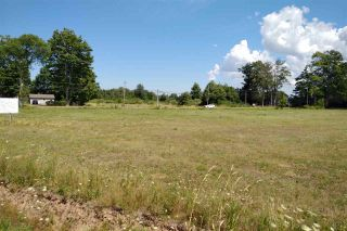 Photo 3: Lot Maple Avenue in Berwick: 404-Kings County Vacant Land for sale (Annapolis Valley)  : MLS®# 202015598