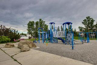 Photo 36: 38 MT ABERDEEN Grove SE in Calgary: McKenzie Lake Detached for sale : MLS®# A1028563