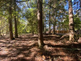 Photo 14: 4665 CRESCENT ROAD in Nelson: Vacant Land for sale : MLS®# 2461363