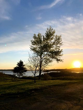 Photo 26: 1898 Ostrea Lake Road in Musquodoboit Harbour: 35-Halifax County East Residential for sale (Halifax-Dartmouth)  : MLS®# 202113845