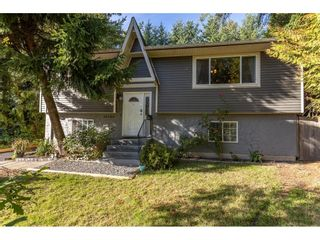 Photo 1: 22939 FULLER Avenue in Maple Ridge: East Central House for sale : MLS®# R2620143