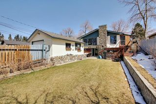 Photo 31: 1435 16 Street NE in Calgary: Mayland Heights Detached for sale : MLS®# A1099048