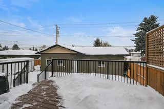 Photo 42: 1452 Richland Road NE in Calgary: Renfrew Detached for sale : MLS®# A1071236