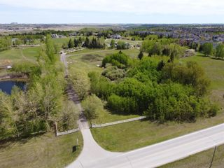 Photo 4: 116 Pine Creek Road: Rural Foothills County Detached for sale : MLS®# A1091741