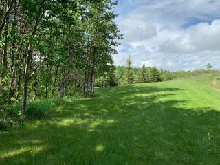 Photo 11: 251096 Welland Way in Rural Rocky View County: Rural Rocky View MD Detached for sale : MLS®# A1119671