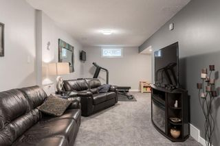 Photo 29: 5927 Thornton Road NW in Calgary: Thorncliffe Detached for sale : MLS®# A1040847