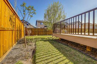 Photo 47: 26 BRIGHTONWOODS Bay SE in Calgary: New Brighton Detached for sale : MLS®# A1110362