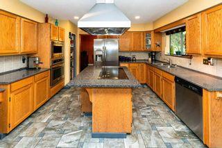 Photo 20: 12414 MCNUTT Road in Maple Ridge: Northeast House for sale : MLS®# R2560793