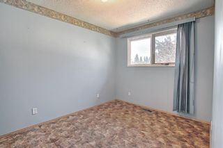 Photo 11: 212 Rundlefield Road NE in Calgary: Rundle Detached for sale : MLS®# A1138911