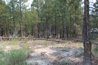 Photo 3: Lot 15 COPPER POINT WAY in Windermere: Vacant Land for sale : MLS®# 2460140