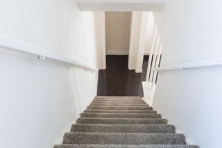 Photo 24:  in Edmonton: Zone 05 House for sale : MLS®# E4254439