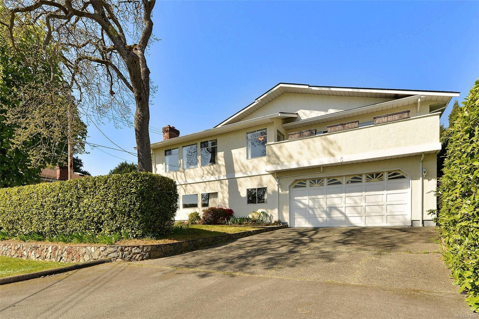 Main Photo: 3301 Argyle Pl in : SE Camosun House for sale (Saanich East)  : MLS®# 873581