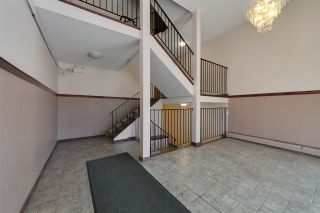 Photo 23: 301 10615 110 Street in Edmonton: Zone 08 Condo for sale : MLS®# E4250293